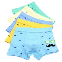 Boy's Boxer Briefs Comfortable Cotton Short Toddler Underwear 5 Pack